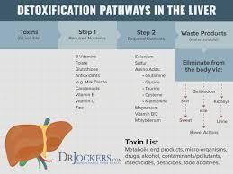 Foods Low In Methionine Chart The 12 Best Food Sources Of Sulfur Drjockers Com