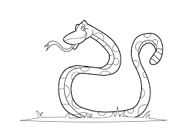 Small Picture Snake Coloring Pages fablesfromthefriendscom