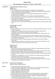 Hris Analyst Sample Resume Hris Analyst Resume Samples Velvet Jobs 7