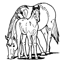 Kleurplaten Paarden En Veulens