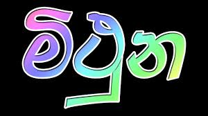 2016 Wasara Sinhala Mithuna Lagna Palapala [ Yearly Horoscope ...