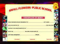 Certificate Of Merit School Certificate Dariya Ganj New Delhi