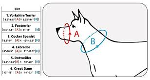 Dogs My Love Muzzle Size Chart Your Home Business
