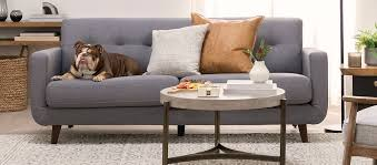 how to clean a fabric couch a step by