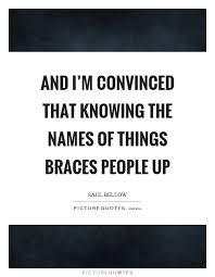 Braces Quotes