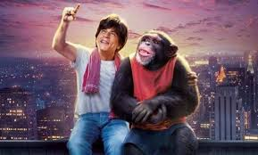 Bollywood Box Office Collection 2019 Report Verdict India