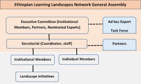 Organizational Structure Of Elln Download Scientific Diagram