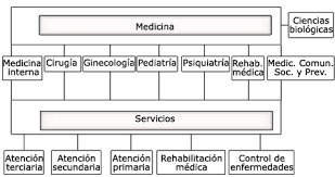 Fundamentación De La Especialidad En Salud Pública