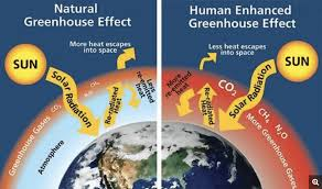 Joshmi Joseph – Climate Change Blog