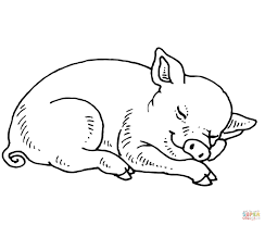 Small Picture Sleeping Baby Pig coloring page Free Printable Coloring Pages