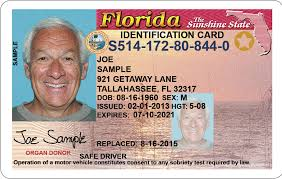 Aging Guide Drivers Florida's For