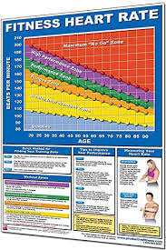 Workout Heart Rate Chart