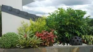 Small Picture Landscape in Raels garden Philippines YouTube