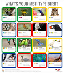 Bird Type Table The Myers Briggs Company