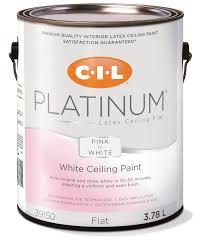 CIL Platinum Interior Paint Pink to White Ceiling - 3.78 L | Walmart  Canada