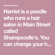 Shampoodle's is a hair salon that you can unlock in main street. Harriet Is A Poodle Who Runs A Hair Salon In Main Street Called Shampoodle S You Can Change Your Hair And Eye Color There Hair Guide Hair Salon New Leaf