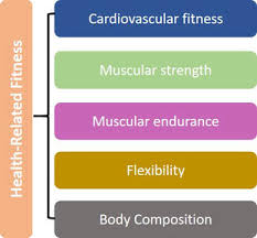 Robergs Chart What Do We Mean By Physical Fitness Your Guide To Living