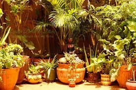 Small Picture Balcony Garden Pots India Best Balcony Design Ideas Latest
