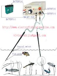 how to electrofish electrofisher electrofishing equipment fish electricfishers