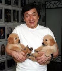 He is both a talented archaeologist and a skilled martial artist who lives in san francisco with his older relative, uncle. 75 Jackie Chan Filme Ideen In 2021 Jackie Chan Schauspieler Jackie Chan Filme