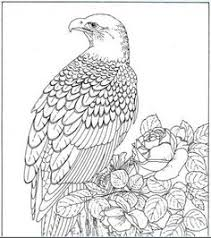 Small Picture Detailed Coloring Pages For Adults coloring pages animals
