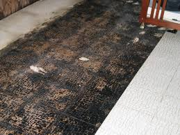 asbestos floor tile under carpet