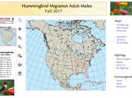 2017 Hummingbird Migration Chart Analyzing Fall Migration Data