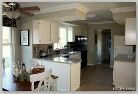 Grey Painted Kitchen Cabinets Painted Kitchen Cabinets Image Of Before And After Painted