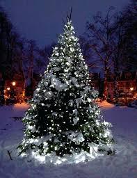 christmas tree lighting ideas. Outside Tree Lights Medium Size Of White Led Snow Light Ideas Inspiration . Christmas Lighting
