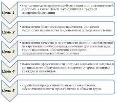 Руководство по социальной педиатрии Разработка стратегии  Стратегические цели социально экономического развития России в начале xxi века