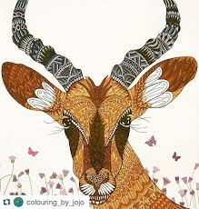 Small Picture impala Magical Animals Pinterest Impalas Zentangle and