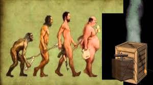 Human Evolution Chart 2 0