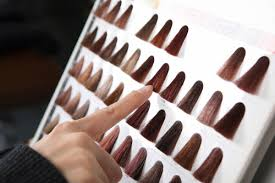 Garnier Color Naturals Shades Chart Garnier Hair Color Range Top Ten Shades For Indian Skin Tones