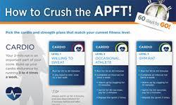 apft 60 days infographic