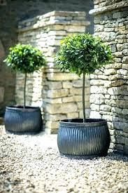 large outdoor planter ideas large outdoor planter ideas best large outdoor planters ideas on big and patio planter home depot pots for trees garden large