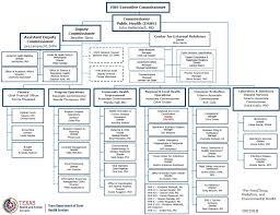 Organizational Chart Stunning Texas Department Of State Health Services Organizational Chart