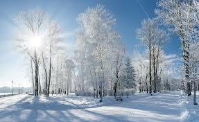 Znalezione obrazy dla zapytania: winter