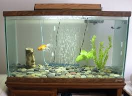 office fish tank. Office Fish Tank. Decorations:striking Modern Home Aquarium Decoration Ideas With Leather Sofa Tank