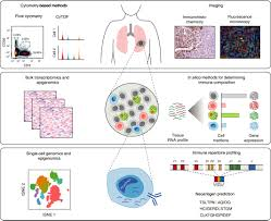 Sf Rank And Exp Chart Computational Approaches For Characterizing The Tumor Immune