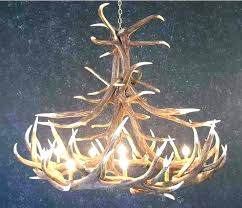 making a deer antler chandelier how to make a whitetail deer antler chandelier full image for