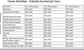calories burned per hour doing horse activities