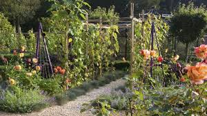 vegetable garden trellis ideas 12 ways