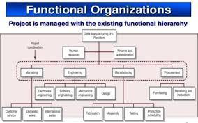 Functional Organizational Chart Functional Organizational Structure Of Project Organization