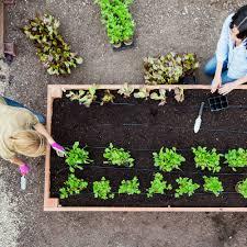 Small Picture 100 Raised Garden Bed Design Ideas Garden Ideas Stunning