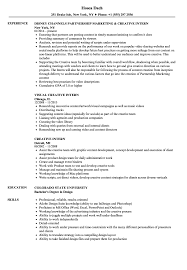 How To Write An Internship Resume Creative Intern Resume Samples Velvet Jobs