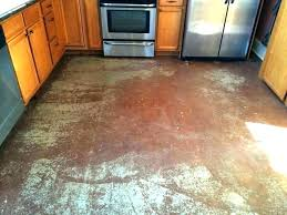 stained concrete kitchen floor stained concrete floors kitchen staining concrete floor acid stained concrete floors homes stained concrete kitchen floor