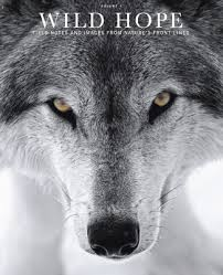 Need Hope? – Wolves and Writing