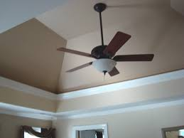 Image of: Tray Ceiling Ideas