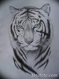 эскиз тату тигра мужские 09032019 005 Tattoo Sketches