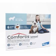 comfortis for cats and dogs comfortis dogs90